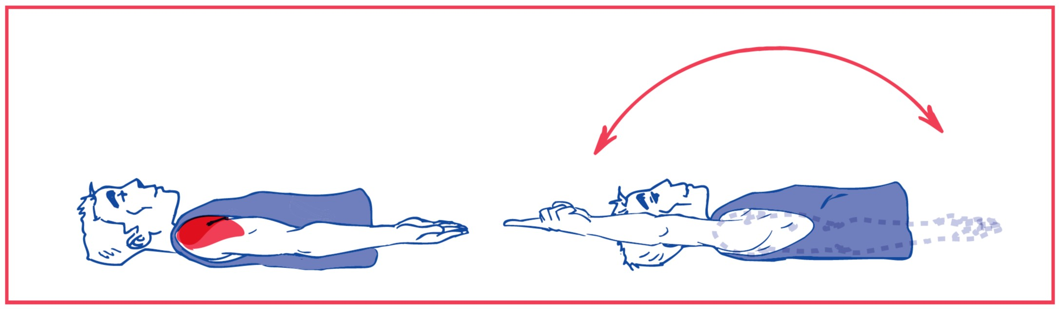 1. Free elevation of the arm
