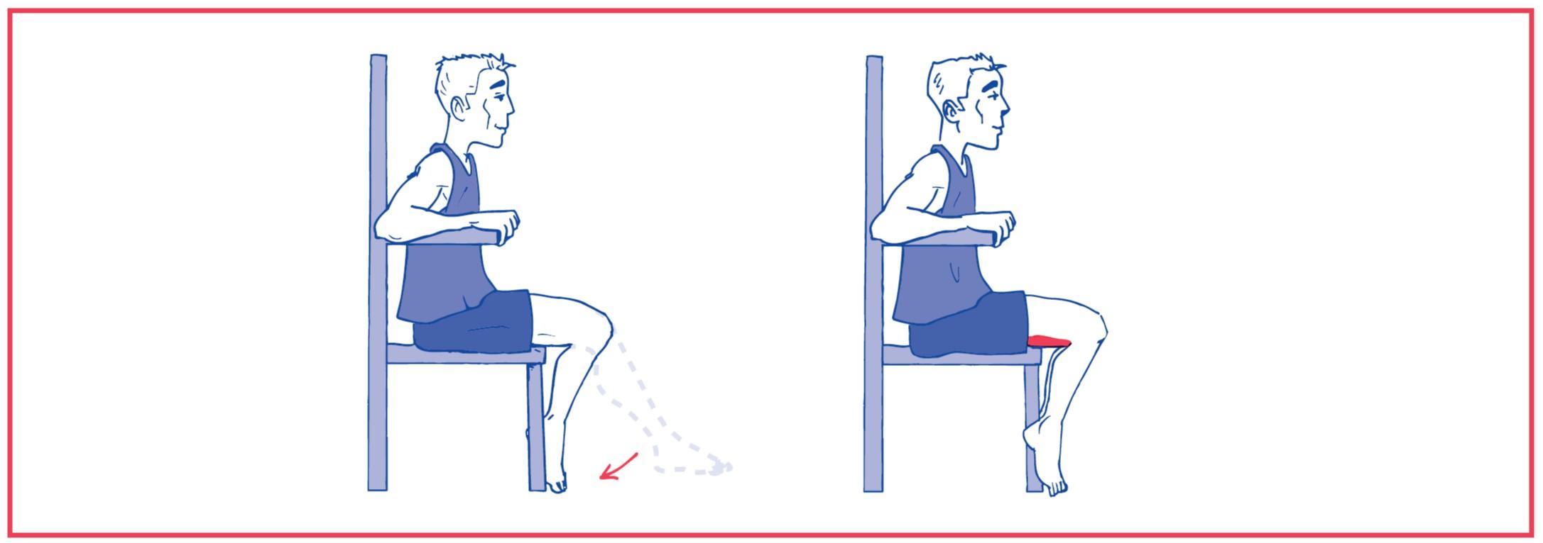 1. Free knee flexion