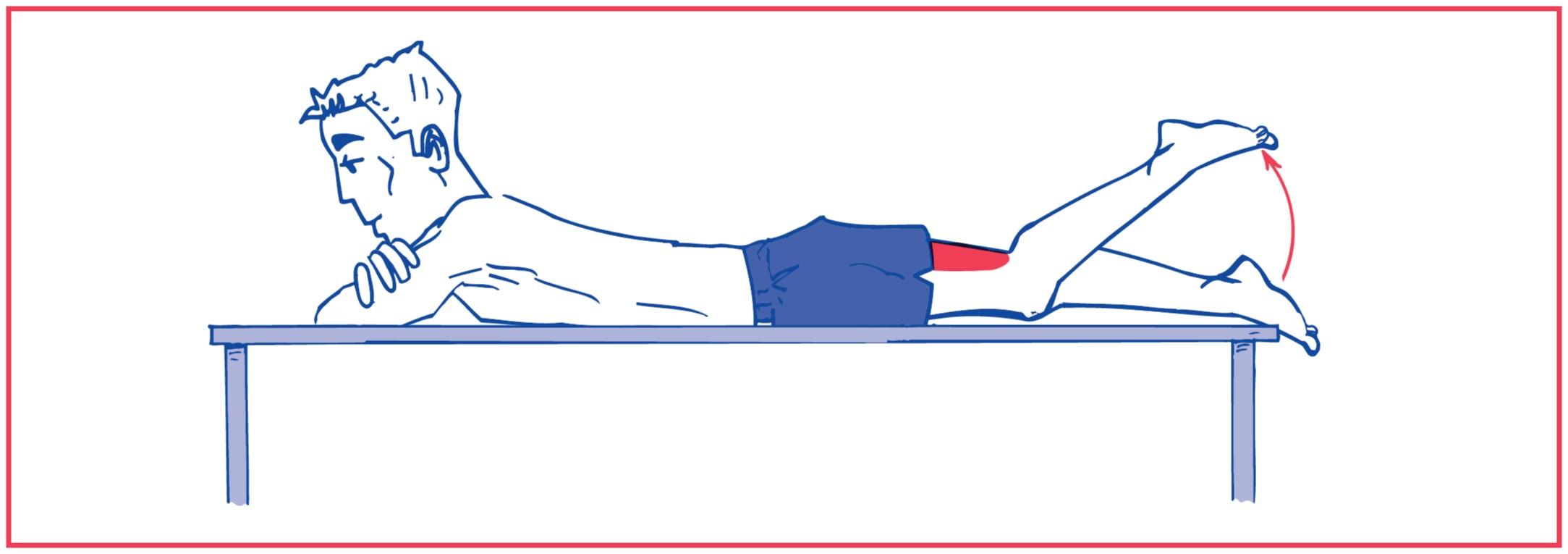 2. Knee flexion against gravity