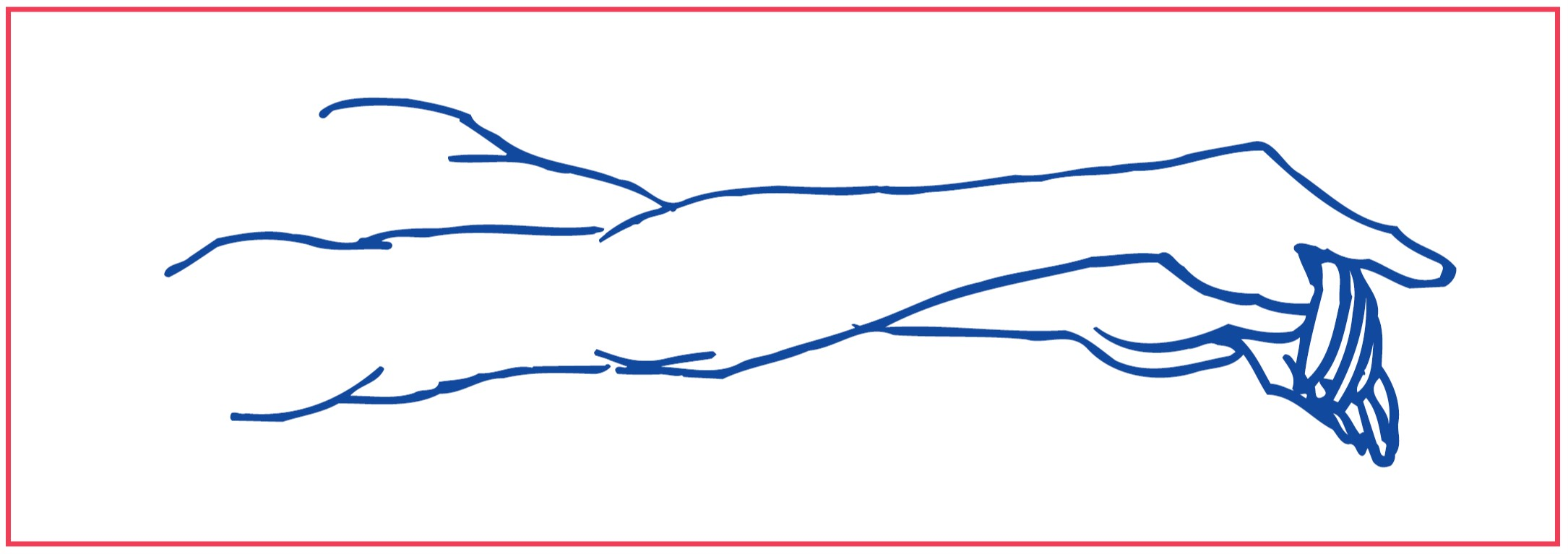3. Stretching of muscle that bend the wrist and fingers