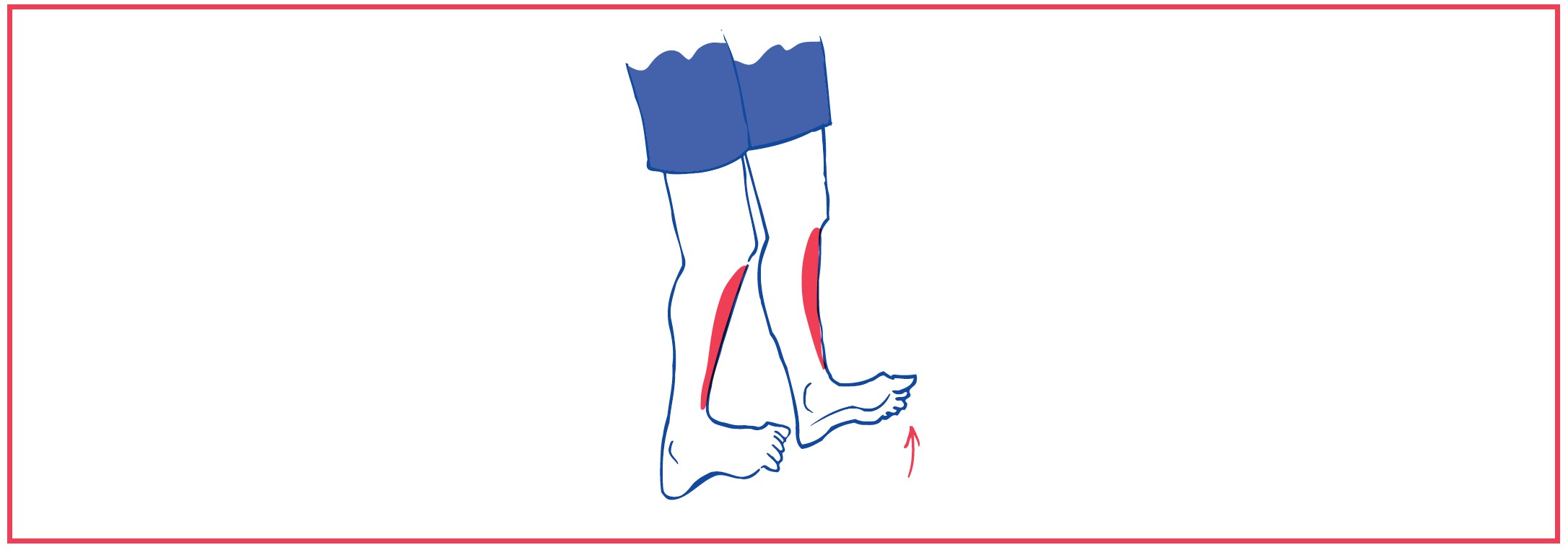 2. Walking on toes or heels balancing exercise